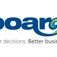 BOARD APPLICATIONS: A NEW WAY OF SEEYING BUSINESS INTELLIGENCE